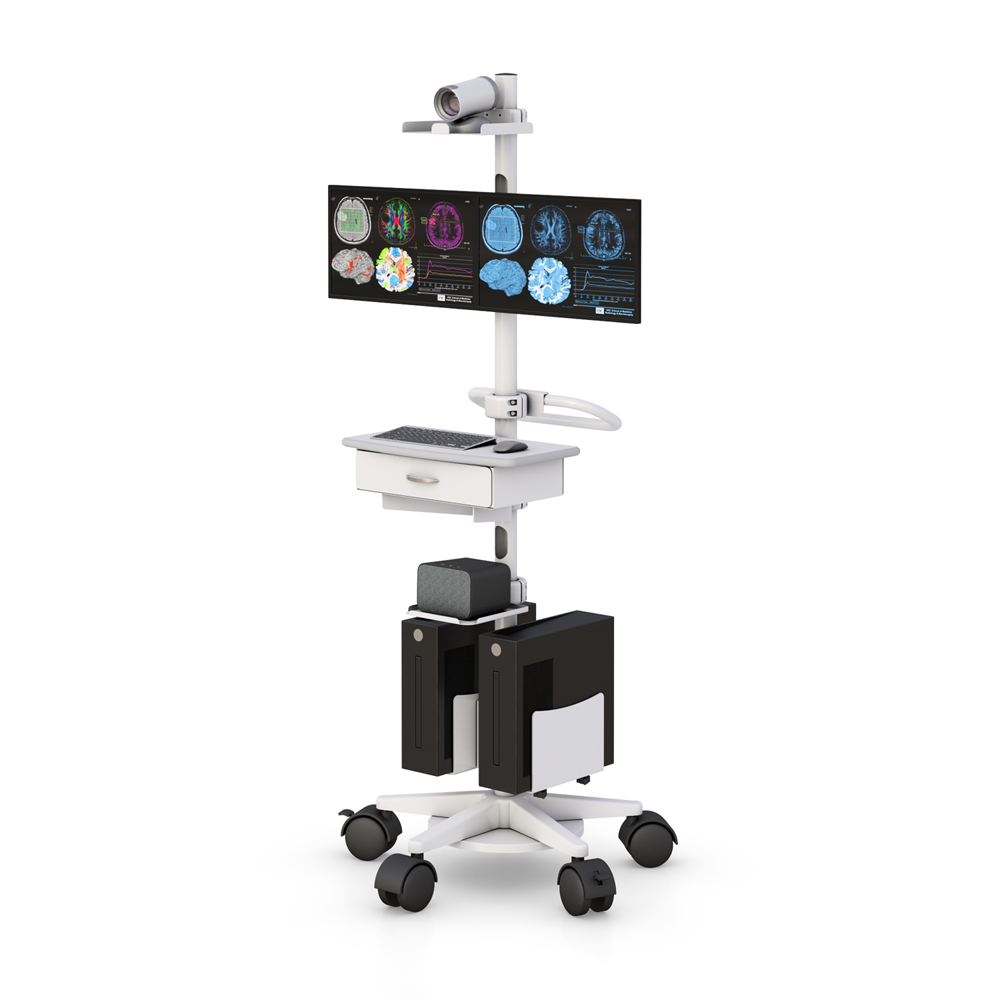 Video Conference Dual Monitor Cart